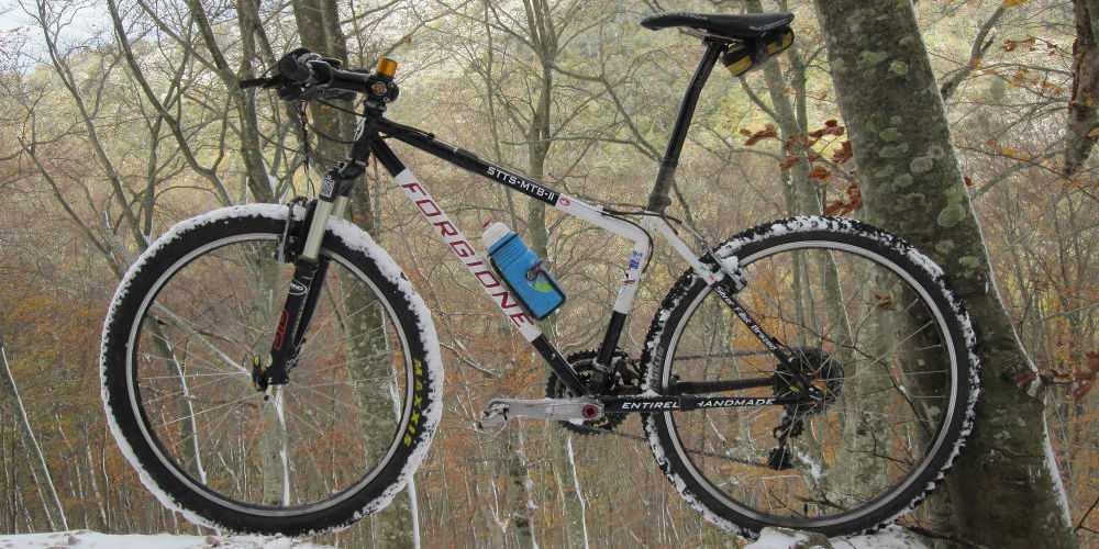 Formenvielfalt in Stahl: Forgione Telai | Stahlrahmen-Bikes